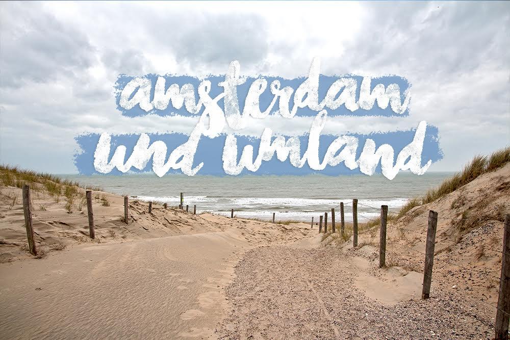 Amsterdam Tagesausflug in die Umgebung und Natur: Nordseestrand Bloemendaal