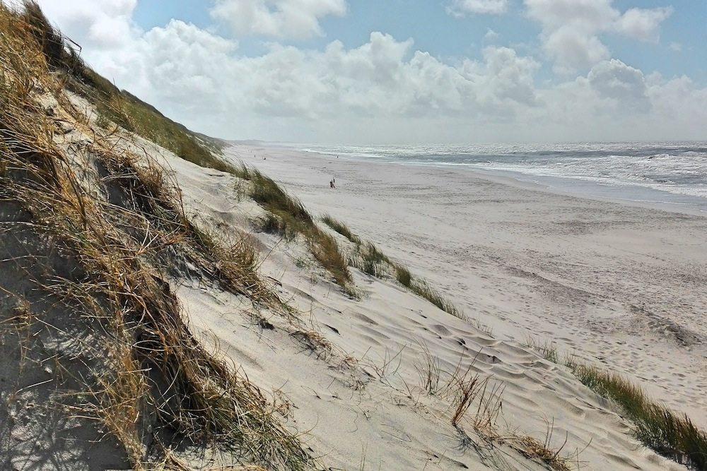 schoenster-strand-daenemark-mit-duenen