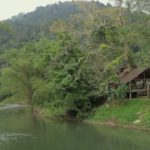 Im Khao Sok Nationalpark