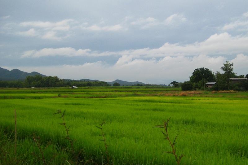 sukhothai-historical-parc
