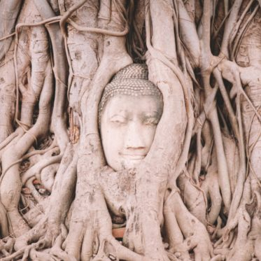 Thailand Ayutthaya Tipps Tempel