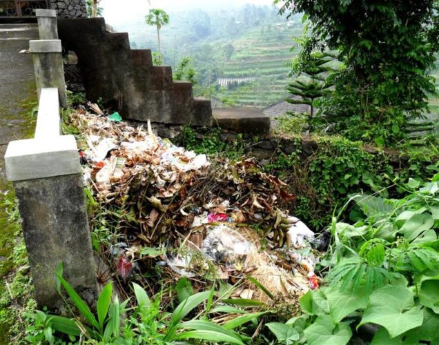 Umweltverschmutzung auf Bali
