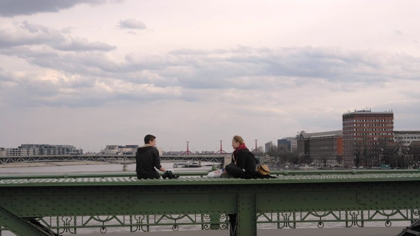 Die grüne Freiheitsbrücke in Budapest