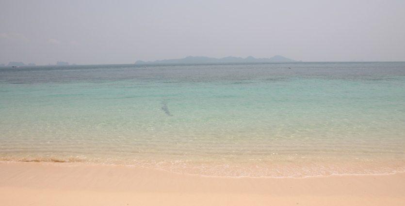 Paradies: Strände auf Koh Kradan in Thailand