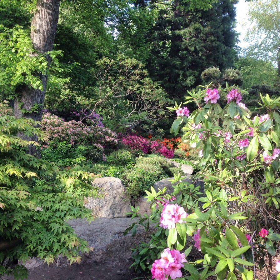 Tipps für ein Hamburg-Wochenende: Alles bunt: Planten un Blomen in der Hamburger Innenstadt