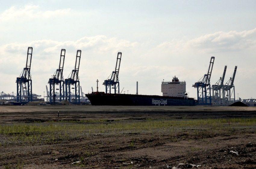 Typisch Hamburg: Die Krähne am Hafen