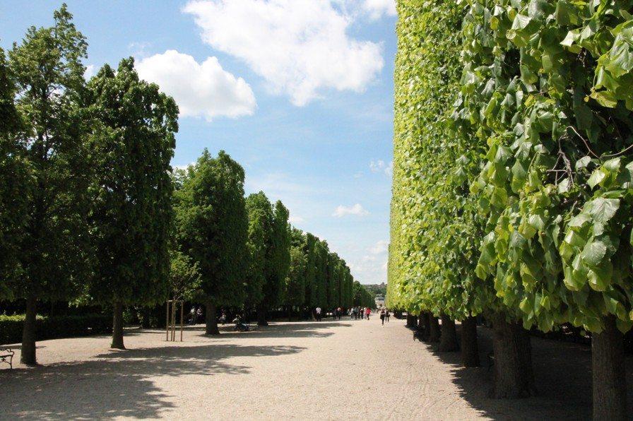 Große Parks beim Schloss Schönbrunn in Wien