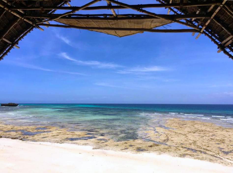 Chumbe Island Tagestrip Sansibar: Ausblick beim Lunch