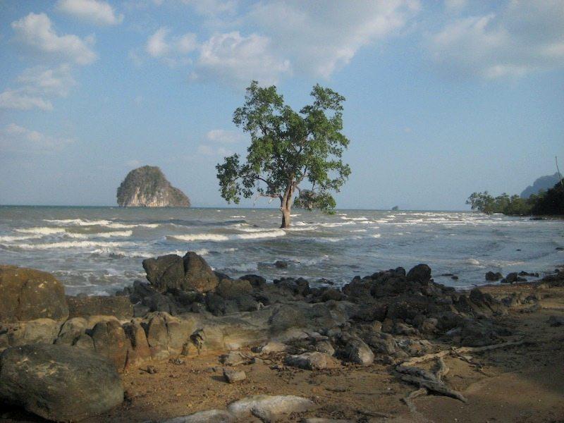 Geheimtipp Thailand - wilder Strand auf Koh Lanta Noi in Krabi