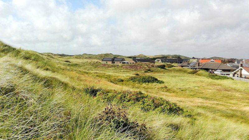 Düenen nahe des Strands bei Hvide Sande