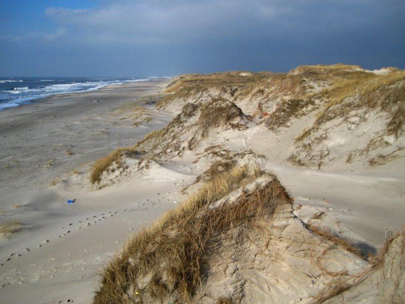 Düenen an der Nordsee in Dänemark bei Hvide Sande