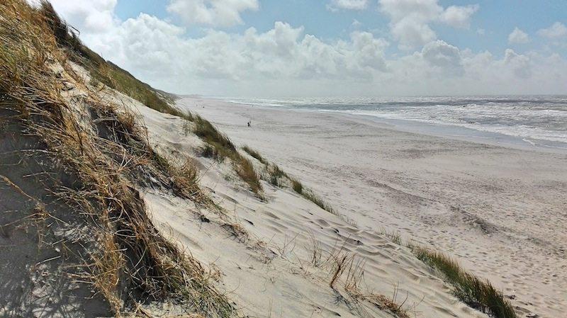 Düenen am Strand bei Hvide Sande