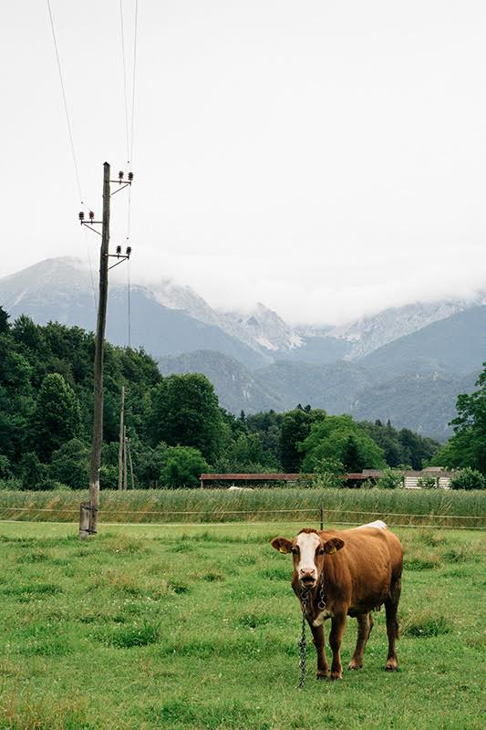 Julische Alpen in Slowenien - Natur pur auf unserer Rundreise