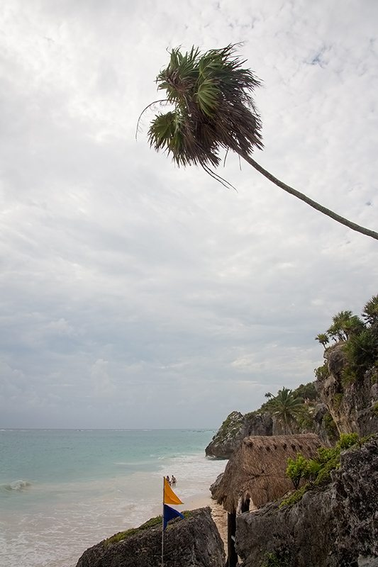 strand und palmen an den ruinen von tulum