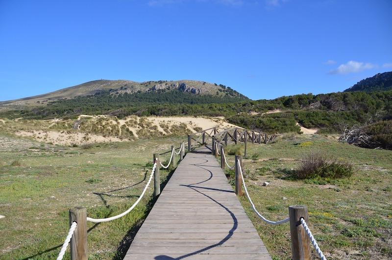 Der Cala Mesquida Strand auf Mallorca schmiegt sich an Dünen