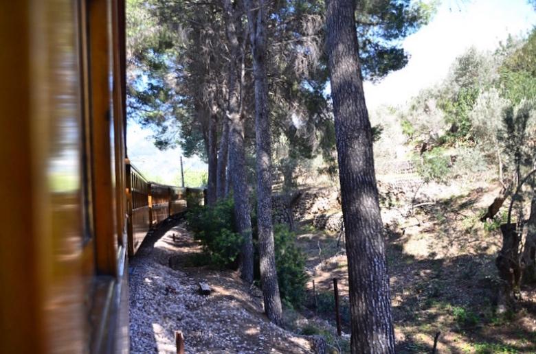 Auch ein Mallorca-Highlight: Unterwegs mit dem Roten Blitz von Palma nach Soller