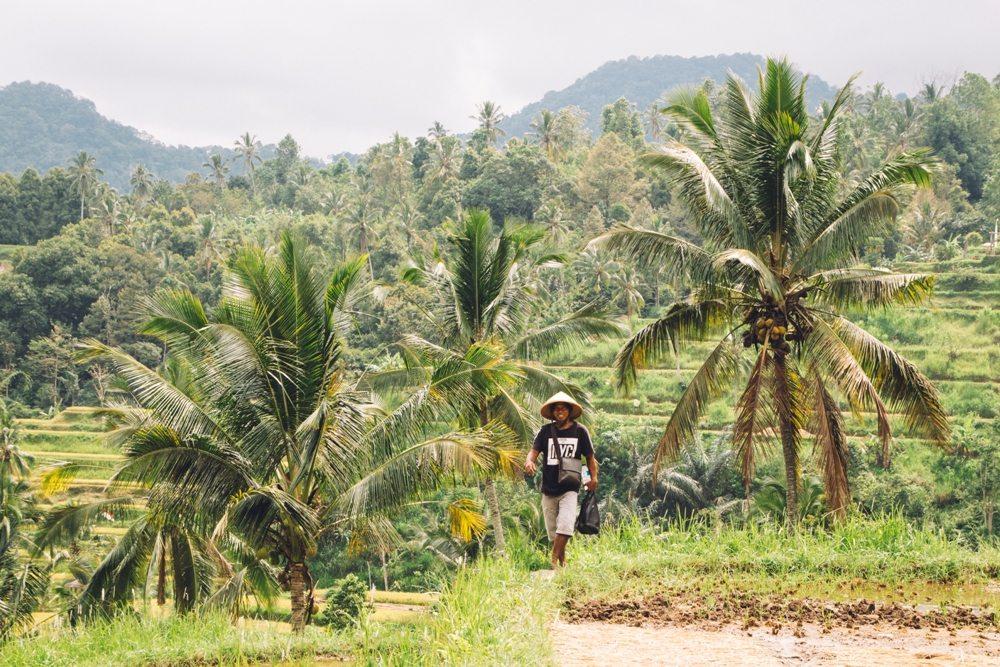 Geheimtipp für eine Bali Backpacking Route: Lemukih Ancient Villages in Nordbali inmitten von Dschungel, Bergen und Reisfeldern
