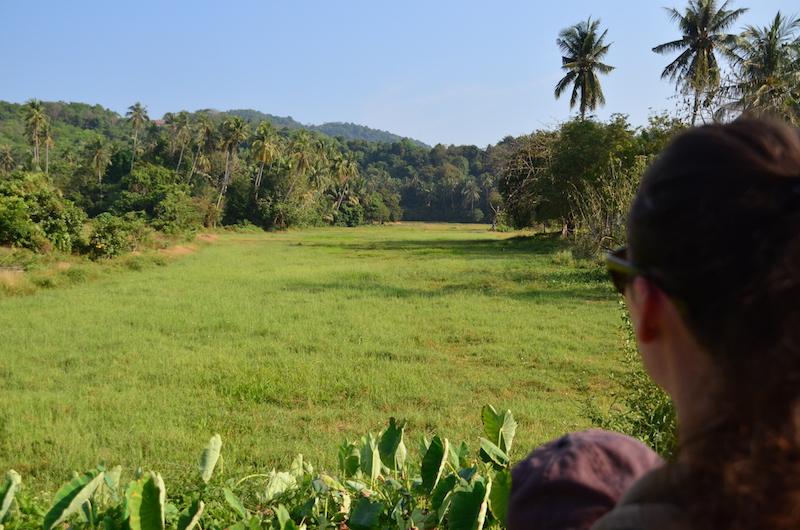 Backpacking mit Kind: Meine Tipps nach einem Monat in den Tropen - Malaysia