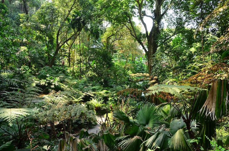 Anfahrt zum Tropical Spice Garden am besten mit dem 101 Bus