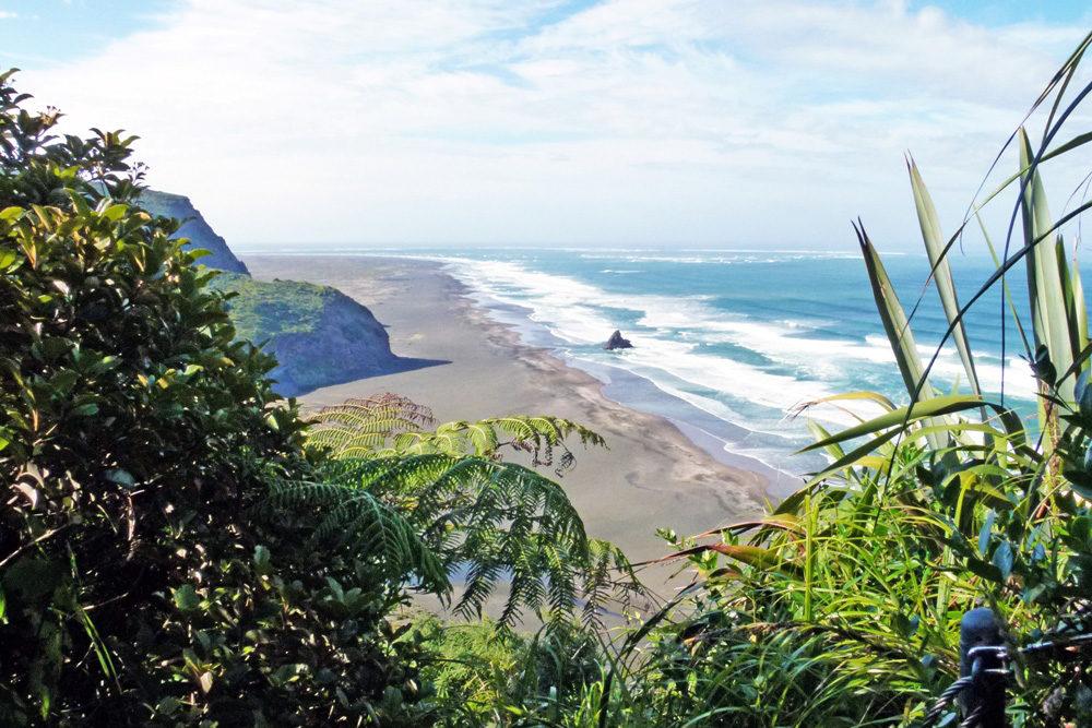 Neuseeland Rundreise 4 Wochen - Waitakere Ranges ein Highlight