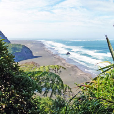 Neuseeland Rundreise 4 Wochen - Waitakere Ranges ein Highlight