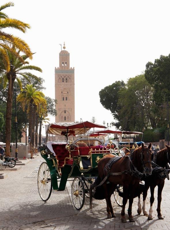 Eine Woche Marrakesch Urlaub - mit der Kutsche unterwegs