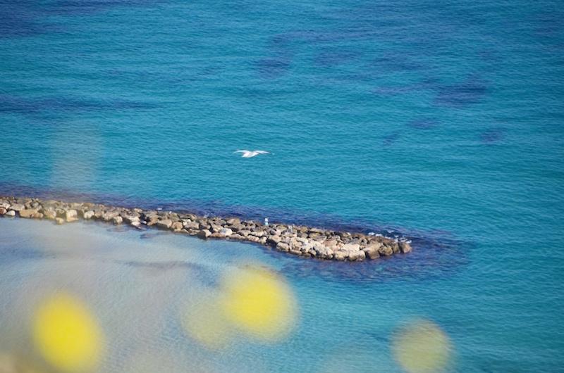 Aussicht von der Burg Santa Barbara in Alicante auf den Postiguet Strand