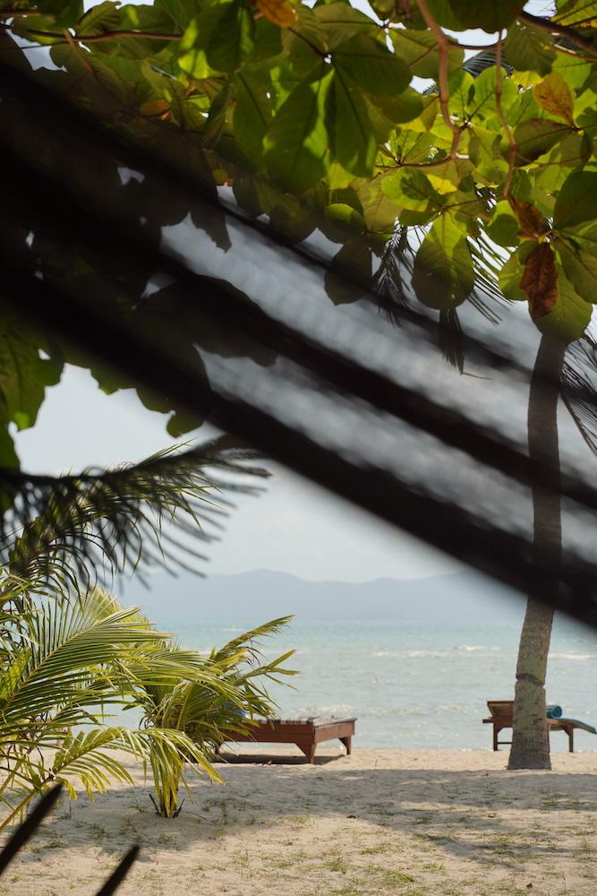 Am Traumstrand Baan Tai - beste Unterkunft auf Koh Phangan - ein Bungalow direkt am Strand
